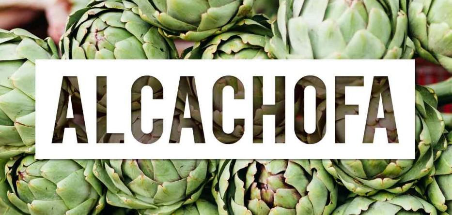 alcachofa perder peso