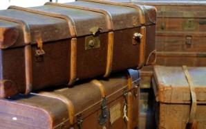 trunks-1527657_1280 (1)