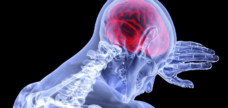 brain-3168269_1280 (1)