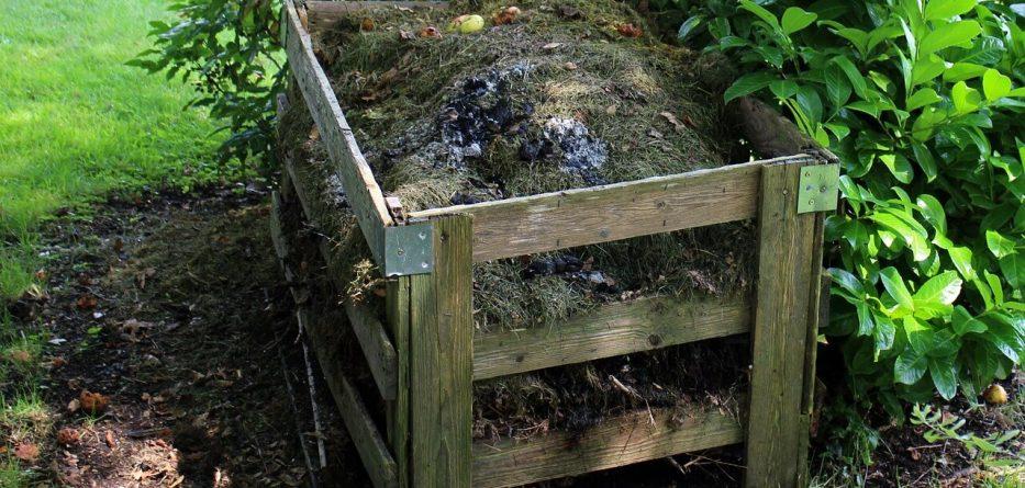 compost-419259_1280 (1)